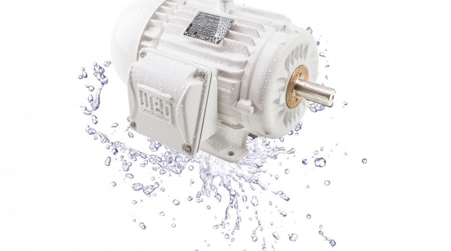 W22 Wash, moteur électrique lessivable pour l'agroalimentaire et le secteur pharmaceutique