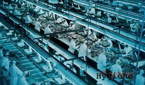 moteur triphasé industrie agroalimentaire