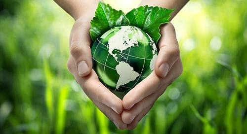 Mains tenant un globe sur un fond végétal