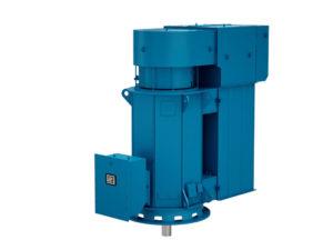 moteur vertical W60 WEG